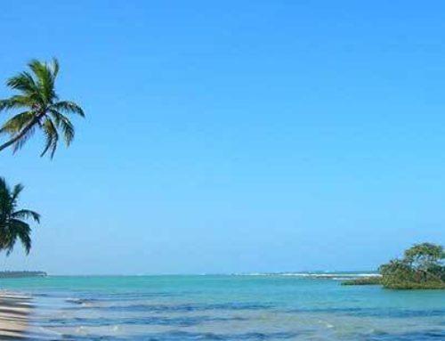 Bahia e Pernambuco